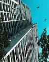 ราคา ลาดพร้าว  ดิ อิสสระ ลาดพร้าว คอนโดมิเนียม  The Issara Ladprao condominium