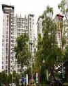 ราคา สุขุมวิท เดอะ พาร์คแลนด์ ศรีนครินทร์ คอนโดมิเนียม  The Parkland Srinakarin condominium