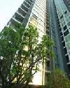 ราคา สุขุมวิท ควอทโทร บาย แสนสิริ คอนโดมิเนียม  Quattro by Sansiri condominium