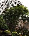 ราคา พระราม4 เดอะ เนเชอรัล เพลส สวีท คอนโดมิเนียม  The Natural Place Suite condominium