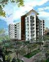 ราคา สาทร  สาทร พลัส ออน เดอะ พอนด์ คอนโดมิเนียม  Sathorn Plus On The Pond condominium
