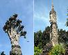 เลียบเลาะเมืองริมโขง ประตูเชื่อมโยงไทย-ลาว